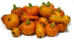 Mini Decorative Realistic Fall Pumpkins and Gourds